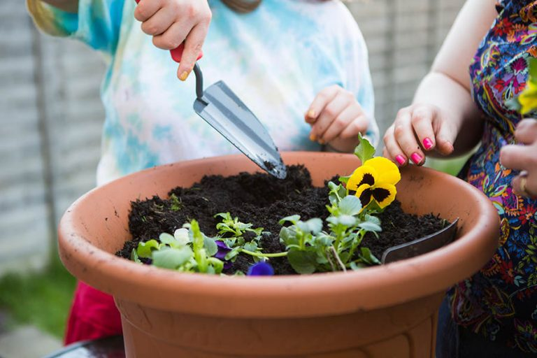 Gardening-02a